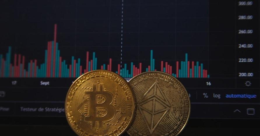 Bitcoin Gambling vil øke etter den siste PayPal kunngjøringen
